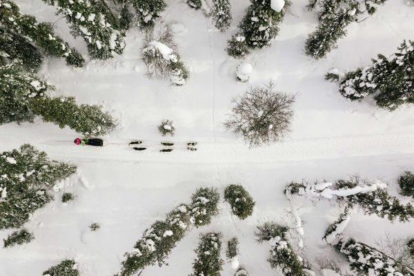 swedish lapland husky sledding drone istk