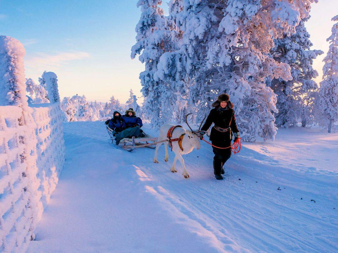 finnish lapland star arctic hotel reindeer safari happy people