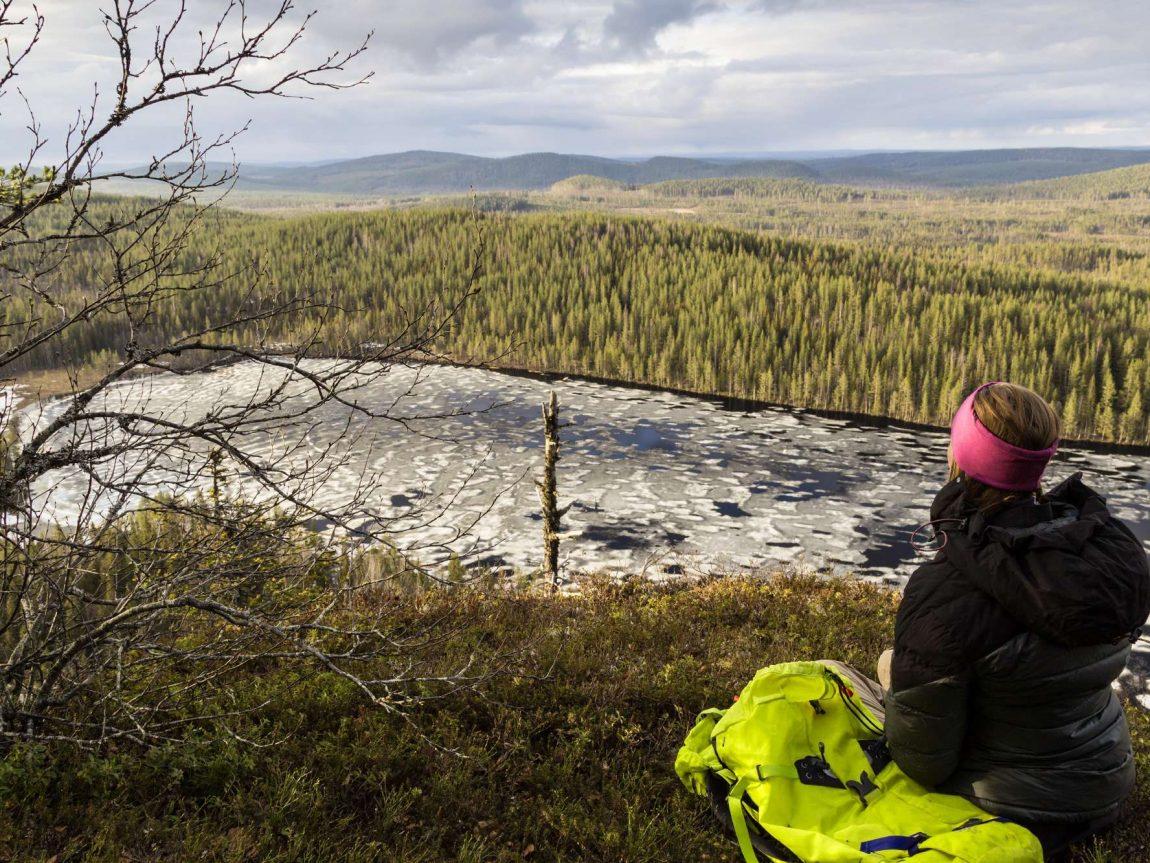 swedish lapland loggers lodge hiking in korgen nature reserve