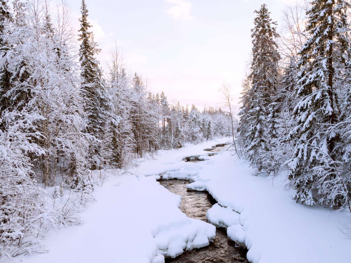 swedish lapland loggers lodge scenic surrounds ll