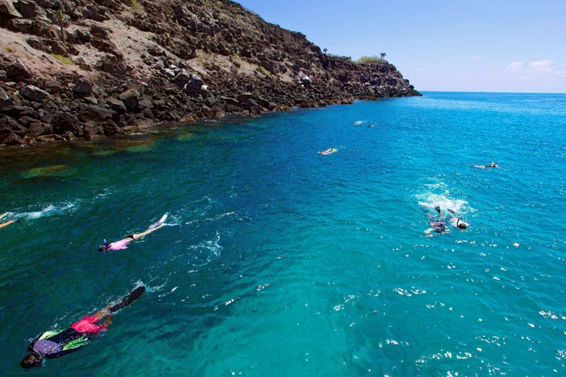 galapagos snorkelling istk
