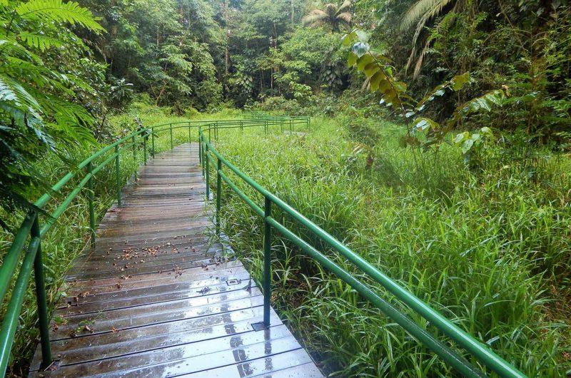 edu costarica hotel sbs trail