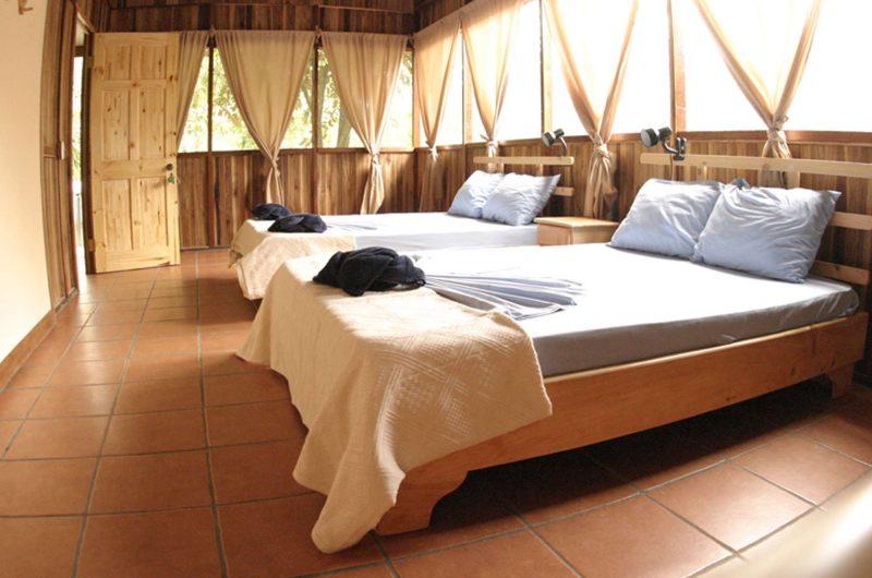 edu costarica hotel turtle twin