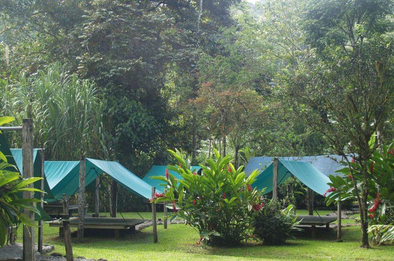 edu costarica hotel tigre camp