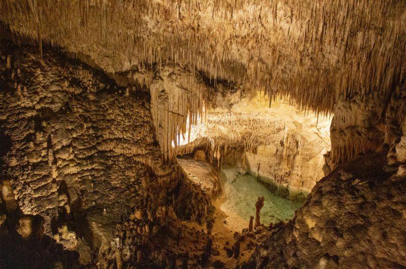 edu mallorca drach caves view