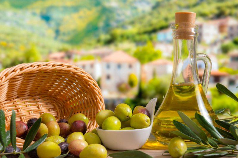 edu mallorca olive oil tour