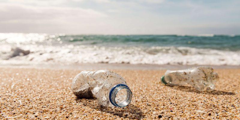edu plastic beach
