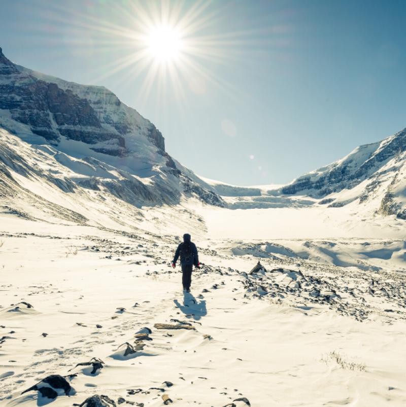columbia icefield man walking