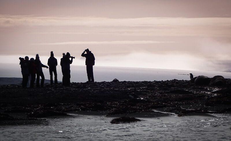 photograhers in antarctica cp