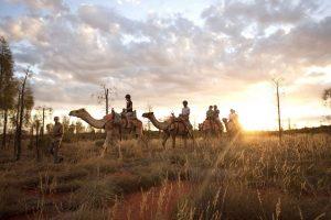 longitude 131 camel trek