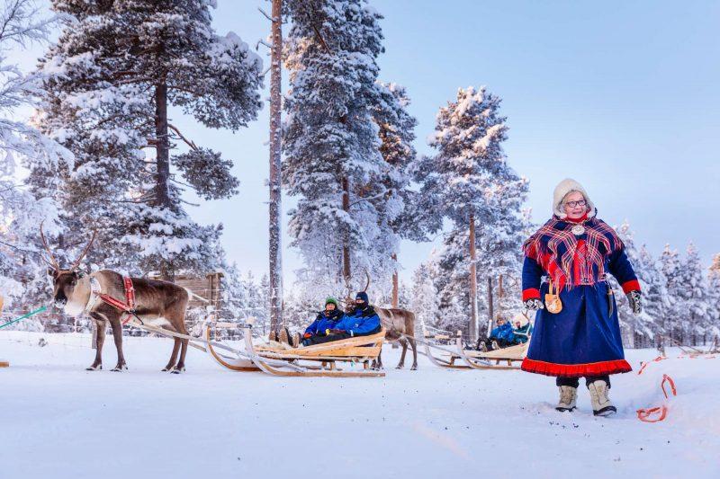finnish lapland inari reindeer sledding with sami