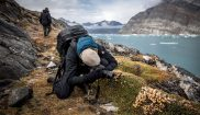 east greenland photographing wildflowers hiking trail vg
