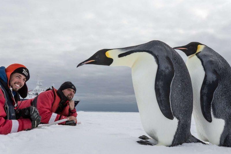 antarctica close encounter with emperor penguins oce