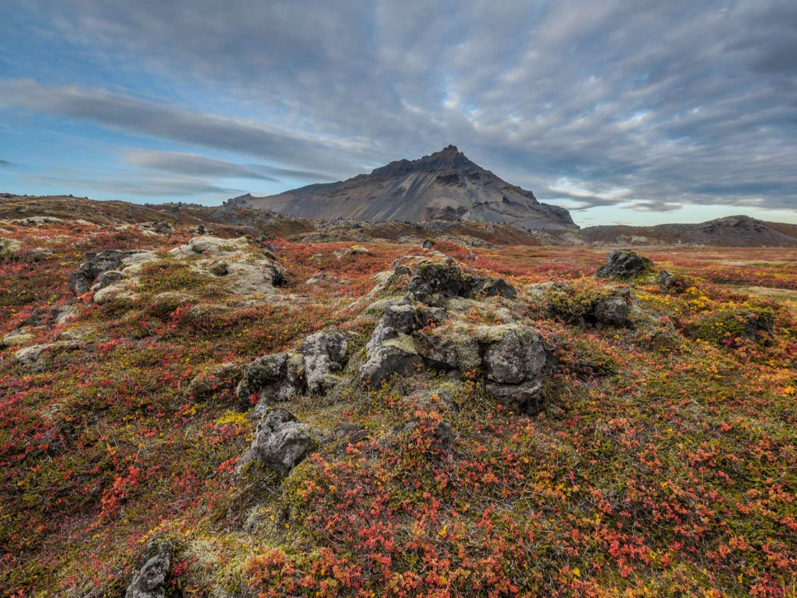 iceland mt stapafell snaefellsnes autumn rth